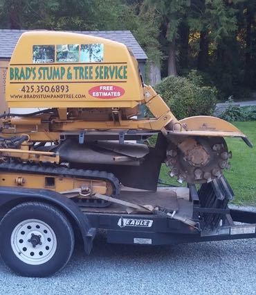 contact Brad's Stump and Tree Service
